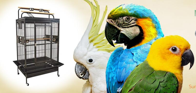Promotions actuelles : cages et volières
