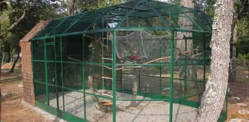Offrez une voli re ext rieure vos oiseaux blog for Voliere exterieur occasion