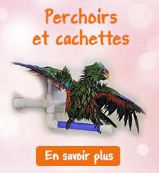 Perchoirs perruches