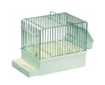 Cage pour padda apprivoisé