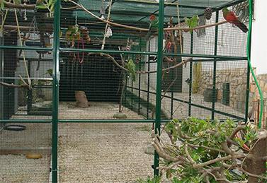 Protection des oiseaux volière de jardin en hiver